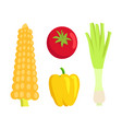 vegetable collection meal vector image