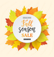 autumn sale banner template with fall leaves vector image