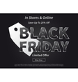 Black Friday with silver price tag vector image
