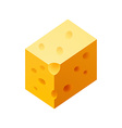 Cheese piece vector image vector image
