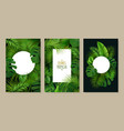 tropical leaves frames set vector image