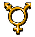 cartoon image of transgender icon gender symbol vector image