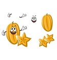 Cartoon yellow carambola or starfruit vector image vector image