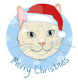 christmas card cute kitten in the red santa s cap vector image