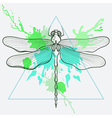 entangle stylized dragon fly in triangle frame vector image vector image