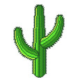 pixel green desert cactus detailed isolated vector image vector image