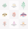 premium quality fruits herbs and spices vector image