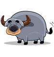 smile buffalo cartoon character vector image