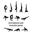 women silhouettes collection of yoga poses vector image