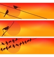 Birds against the sunset Three vector image