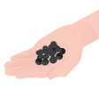 charcoal pills in a hand vector image vector image
