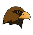 eagle the head of a bird of prey vector image vector image