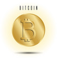 golden coin with bitcoin sign vector image vector image