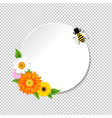 honey background and bee and banner vector image