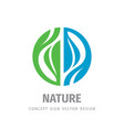 nature logo concept design green leaves and blue vector image