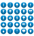 vegetables icons set blue simple style vector image