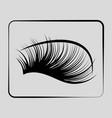 eyelashes icon on a gray background vector image