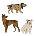 Breeds of dogs set sketch vector image vector image
