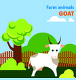 educational flashcard with goat on the farm vector image vector image