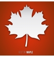 paper maple leaf vector image vector image