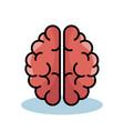 pink brain design vector image