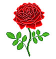 pixel red rose flower detailed isolated vector image vector image
