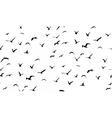 Seagulls flying seamless pattern vector image vector image