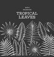 Tropical plants banner design hand drawn tropical