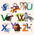 Kids Zoo alphabet with animals vector image