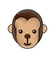 cute baby monkey animal jungle zoo vector image vector image