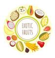 exotic fruits durian apple papaya citron vector image