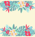 flowers palm leaves jungle leaves vector image vector image