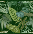 green botanical background with tropical leaves vector image
