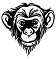Hand drawn portrait of monkey chimpanzee Black and vector image vector image