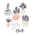 hobby set plants in pots vector image vector image