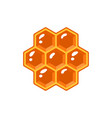 honeycomb isolated on white background vector image vector image