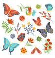 large collection butterflies and garden flowers vector image