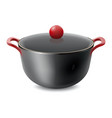 saucepan isolated on white vector image vector image