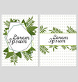 set of floral cards design with green vector image vector image