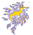 leafy sea dragon vector image