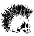skull punk3 vector image