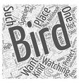 bird watching in arizona Word Cloud Concept vector image vector image