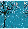 Cherry blossom seamless sakura pattern vector image