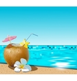 Coconut coctail vector image vector image