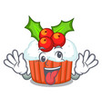 crazy delicious christmas cupcakes isolated on vector image vector image