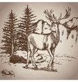 Deer hand drawing landscape vintage