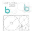 golden ratio template logo fibonacci vector image vector image