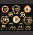 golden vip labels and badges collection vector image vector image