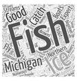 michigan fishing Word Cloud Concept vector image vector image