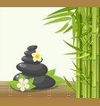 bamboo and stones - spa background vector image
